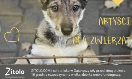 Artyści dla Zwierząt, Zitolo dla Gaju, wspieramy pomagamy